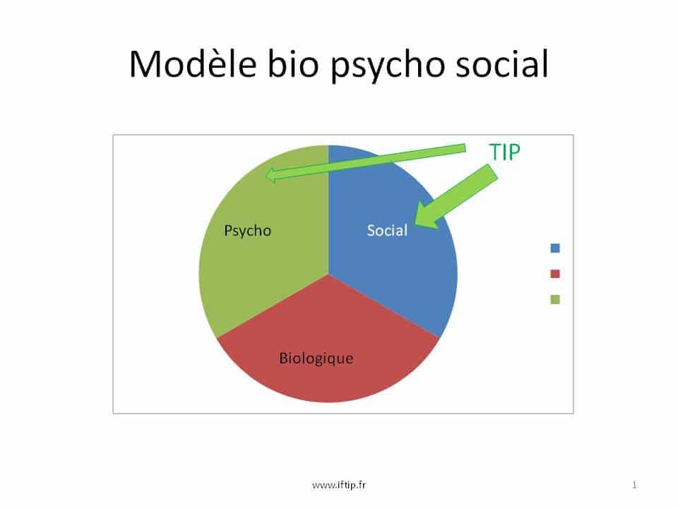 modele bio psycho social attachement bowlby aftip creatip sullivan meyer therapie interpersonnelle